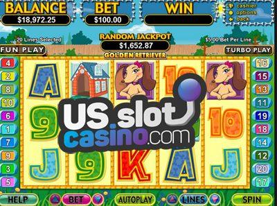 Golden Retriever Slots Review At RTG Casinos