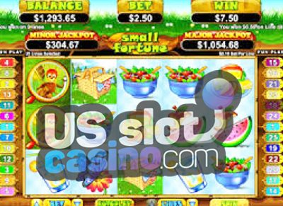 Small Fortune Progressive Slots Review At RTG Casinos
