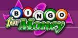 Bingo For Money Review & Bonuses